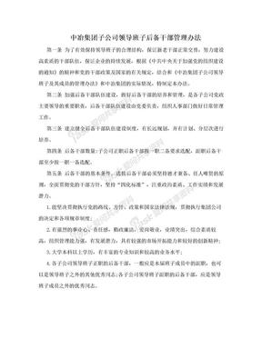 中冶集团子公司领导班子后备干部管理办法.doc