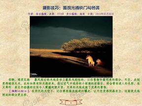 摄影技巧:图说光线快门与色调.pdf
