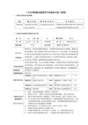 案例一个公司销售总监的学习及成长计划v1.0-20110416.doc
