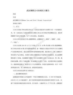 武汉钢铁公司参观实习报告.doc