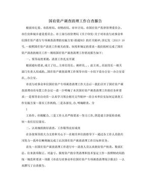 国有资产调查清理工作自查报告.doc