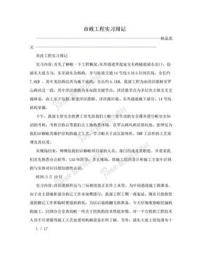 市政工程实习周记.doc