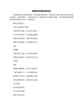 缅怀革命先烈的名言名诗.docx