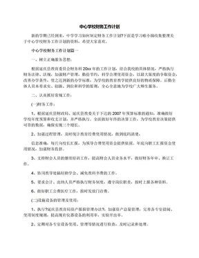 中心学校财务工作计划.docx