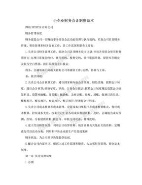 小企业财务会计制度范本.doc
