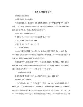 补增值税自查报告.doc