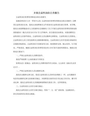 乡镇公益性岗位自查报告.doc