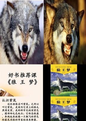 狼王梦好书推荐课(修改版).ppt