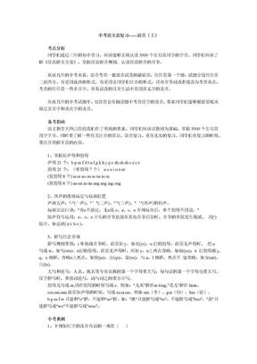 中考语文总复习——语音.docx