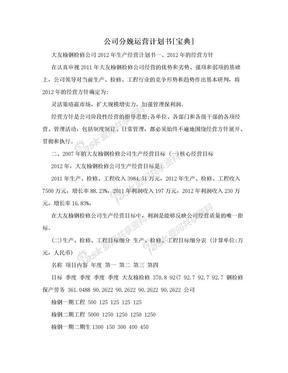 公司分娩运营计划书[宝典].doc