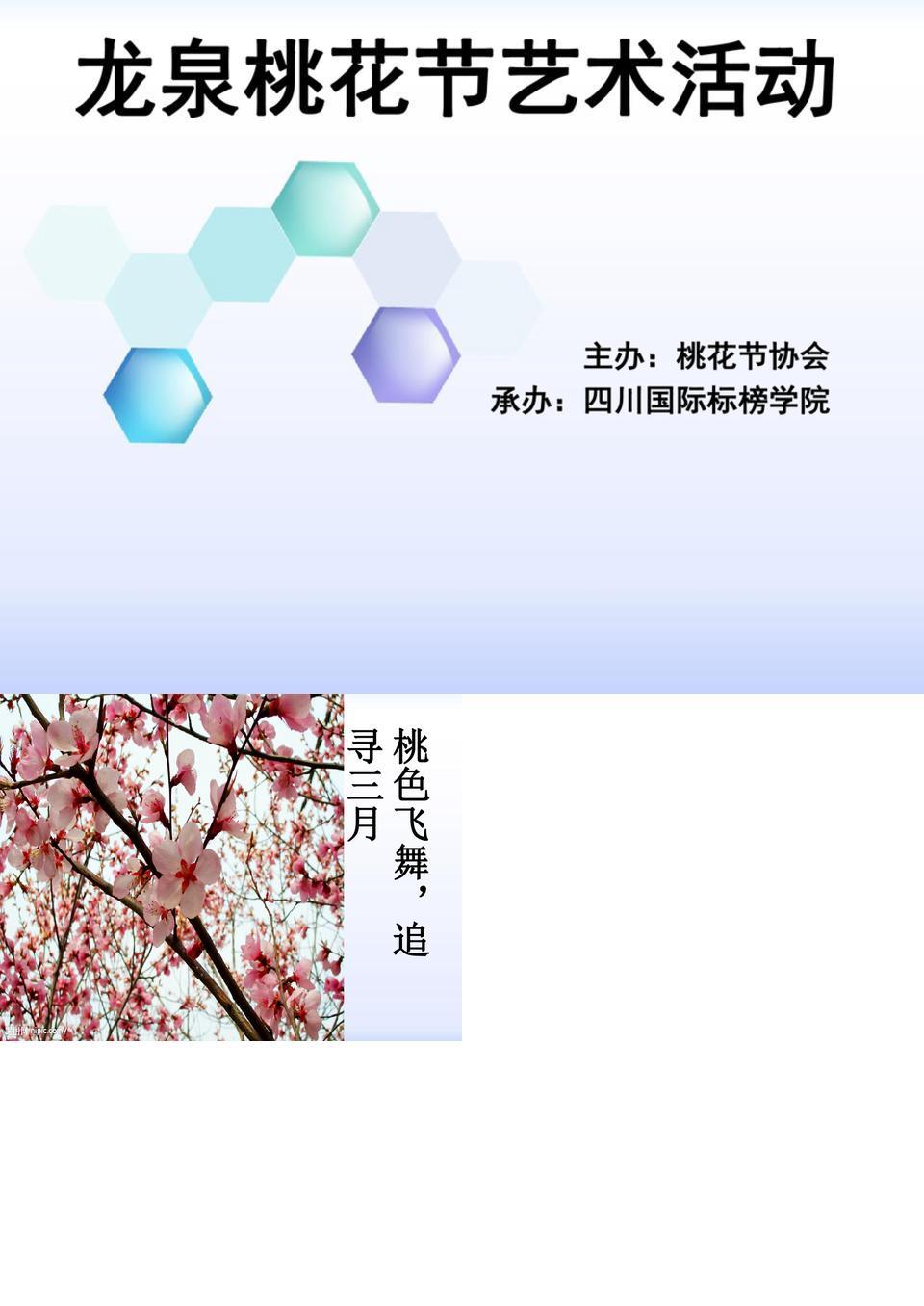 龙泉桃花节艺术活动1.ppt