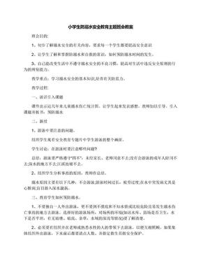 小学生防溺水安全教育主题班会教案.docx