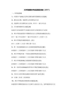 大学毛概期末考试试题及答案(2017).docx