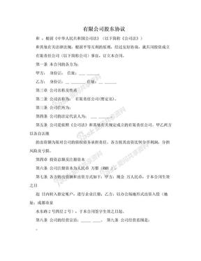 有限公司股东协议.doc