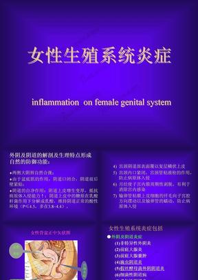 女性生殖系统炎症.ppt