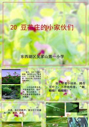 20 豆花庄的小家伙优秀课件.ppt