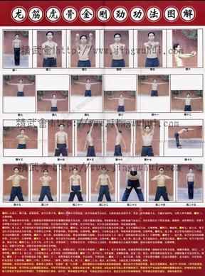 梁焕枝古劳咏春拳《龙筋虎骨金刚劲功法图解》.pdf