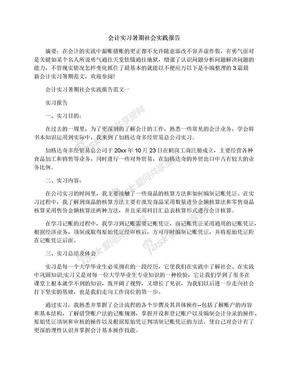 会计实习暑期社会实践报告.docx