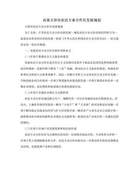 高效天津市农民专业合作社发展规划.doc