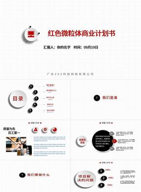 红色微粒体商业计划书.pptx