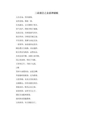 三命通会之金鼎神秘赋.doc