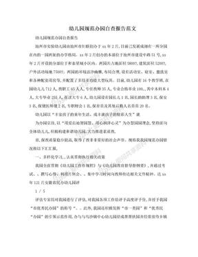 幼儿园规范办园自查报告范文.doc