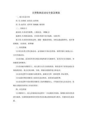 大型集体活动安全紧急预案.doc