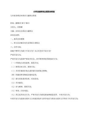 小学法制教育主题班会教案.docx