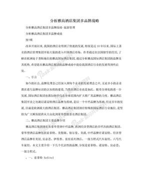 分析雅高酒店集团多品牌战略.doc