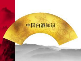 中国白酒知识.ppt