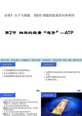 """生物:5.2《细胞的能量""""通货""""—ATP》课件(新人教必修1).ppt"""