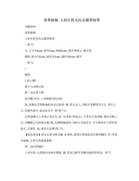 老拳新貌 王培生传吴氏太极拳快拳.doc