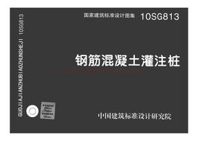 10SG813 钢筋混凝土灌注桩.pdf