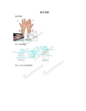 脉诊图解.doc