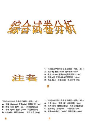 初中语文总复习用课件 (3).ppt