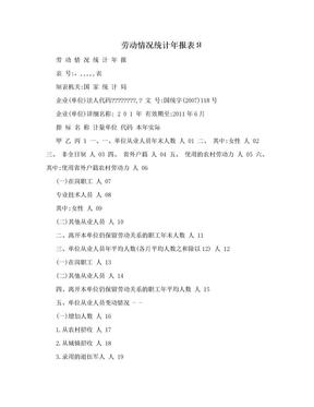劳动情况统计年报表Я.doc