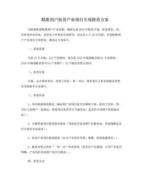 到户产业项目督查方案.doc
