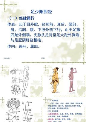 针灸学课件足三阳经_17.足少阳胆经.ppt