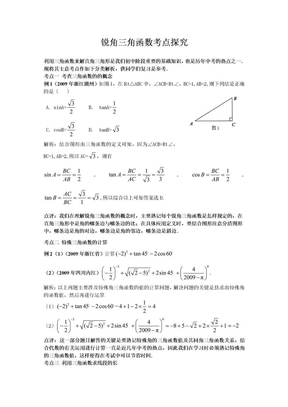 锐角三角函数考点探究.doc