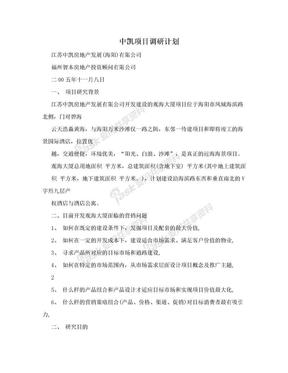 中凯项目调研计划.doc