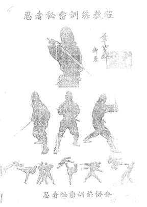 忍者秘密训练教程.覃雪峰.pdf