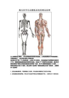 梅安科学长高锻炼系统是这么实现增高的.docx