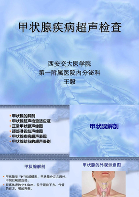 2-甲状腺B超检查.ppt