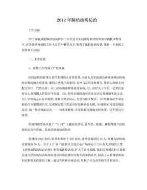 肺结核病防治工作总结.doc