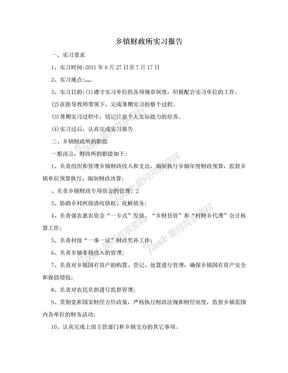 乡镇财政所实习报告.doc
