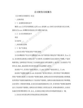 公司财务分析报告.doc