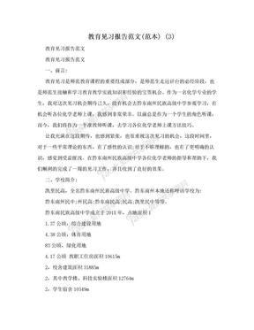 教育见习报告范文(范本) (3).doc
