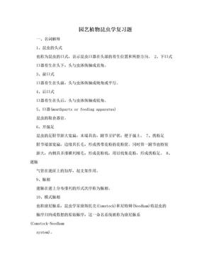 园艺植物昆虫学复习题.doc