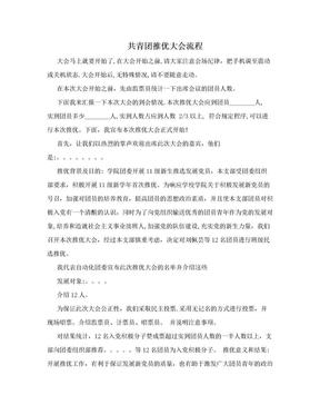 共青团推优大会流程.doc
