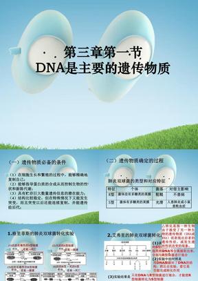 11.10.25高三生物《DNA是主要遗传物质》(课件).ppt